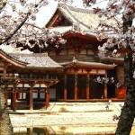 Eine Rundreise durch Japan